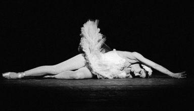 yvette_chauvire_-_mort_du_cygne_-_sipa_1972